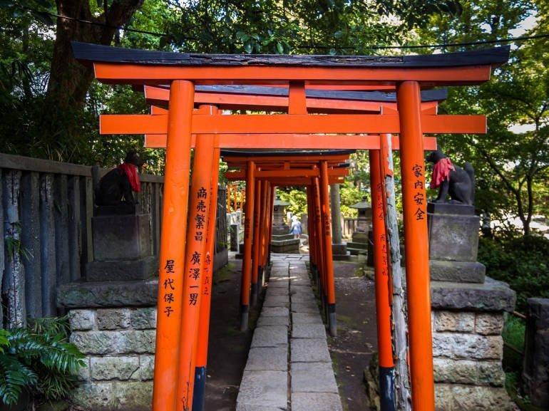 Nezu_shrine_5-770x577