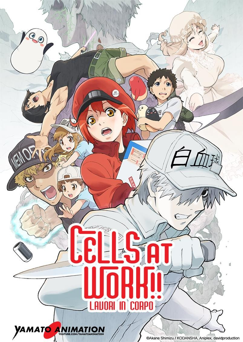 Cells at Work Stagione 2